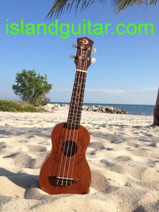 Luna Honu (Turtle) ukulele @ Island Guitar Shop Key West